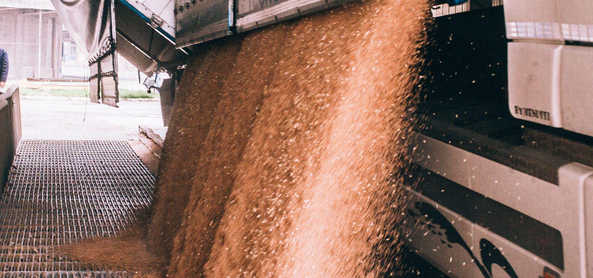Processo produttivo farine